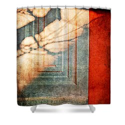 Tree Branches Shadow On Wall Shower Curtain by Silvia Ganora