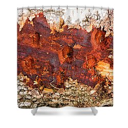 Tree Closeup - Wood Texture Shower Curtain
