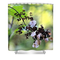 Tree Filigree Shower Curtain