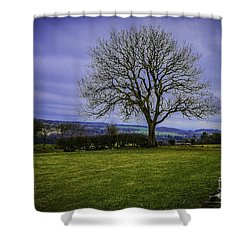 Tree - Hadrian's Wall Shower Curtain by Mary Carol Story