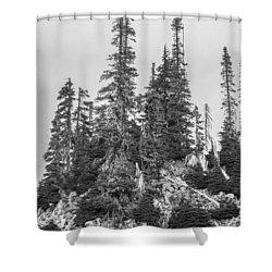 Tree Hill 2 Shower Curtain