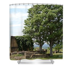 Shower Curtain featuring the photograph Tree House by Jane Ford