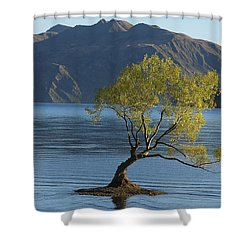 Tree In Lake Wanaka Shower Curtain by Stuart Litoff