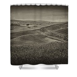 Shower Curtain featuring the photograph Tree In Sienna by Hugh Smith