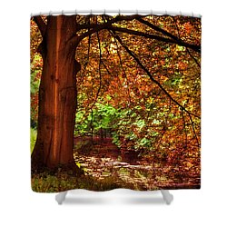 Tree In The Park. De Haar Castle. Utrecht  Shower Curtain by Jenny Rainbow