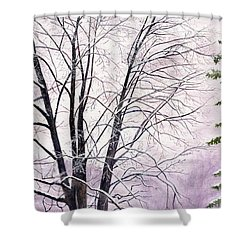 Shower Curtain featuring the painting Tree Memories by Melly Terpening