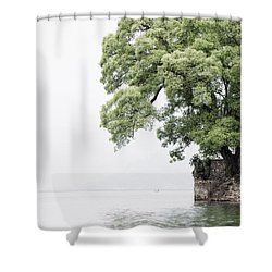 Tree Next To A Lake Shower Curtain