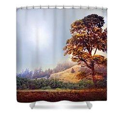 Tree Of Dreams Shower Curtain by Debra and Dave Vanderlaan