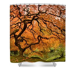 Tree Of Life Shower Curtain by Lori Grimmett