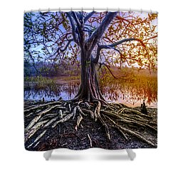 Tree Of Souls Shower Curtain by Debra and Dave Vanderlaan