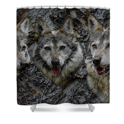 Tree Of Wolves Shower Curtain by Ernie Echols