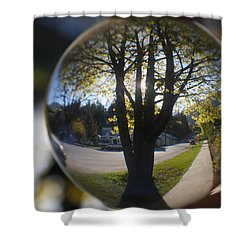 Tree On The Street Shower Curtain by Cathie Douglas