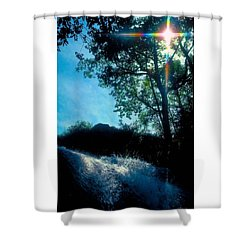 Tree Planted By Streams Of Water Shower Curtain by Marie Hicks