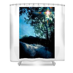 Tree Planted By Streams Of Water Shower Curtain