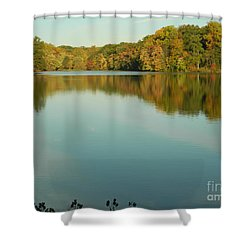 Shower Curtain featuring the photograph Tree Reflections by Emmy Marie Vickers