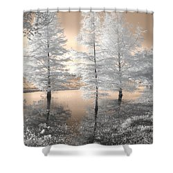 Tree Reflections Shower Curtain by Jane Linders