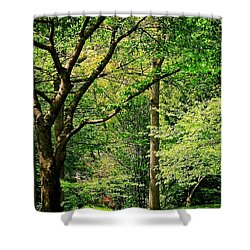 Shower Curtain featuring the photograph Tree Series 3 by Elf Evans