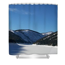 Tree Shadows Shower Curtain by Jewel Hengen