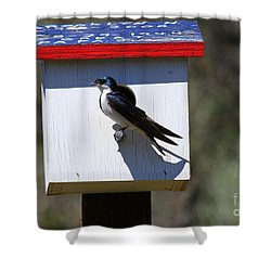 Tree Swallow Home Shower Curtain by Mike  Dawson