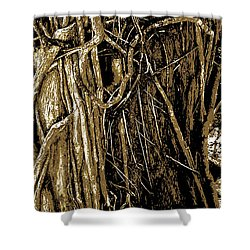 Tree Textures Shower Curtain by Sally Simon