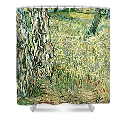 Tree Trunks In Grass Shower Curtain by Vincent van Gogh