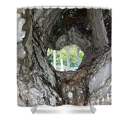 Shower Curtain featuring the photograph Tree View by Rafael Salazar