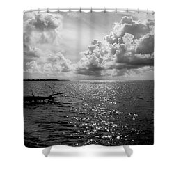 Treefall Shower Curtain by Amar Sheow