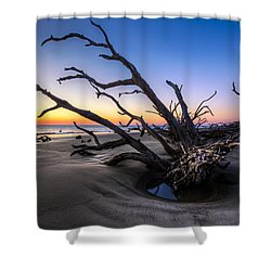 Trees At Driftwood Beach Shower Curtain by Debra and Dave Vanderlaan
