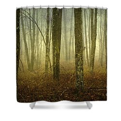 Trees II Shower Curtain