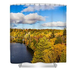 Trees In Autumn At Dead River Shower Curtain