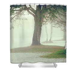 Shower Curtain featuring the photograph Trees In Fog by Silvia Ganora