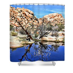 Trees In The Barker Dam Shower Curtain