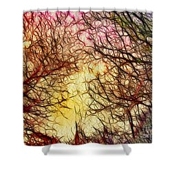 Trees Of The Four Seasons Shower Curtain by Kaye Menner