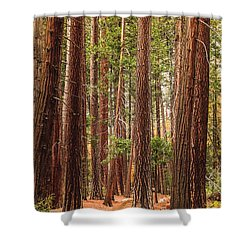 Trees Of Yosemite Shower Curtain by Muhie Kanawati