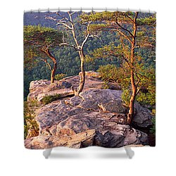 Trees On A Mountain, Buzzards Roost Shower Curtain by Panoramic Images