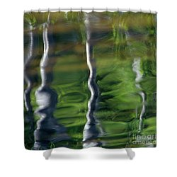Trees Reflections On The River Shower Curtain by Heiko Koehrer-Wagner