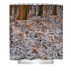 Trees Shower Curtain by Steven Ralser