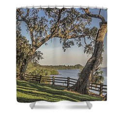 Shower Curtain featuring the photograph Trees With A View by Jane Luxton