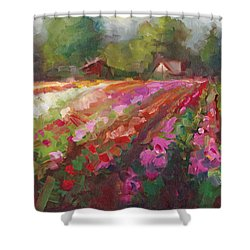 Trespassing Dahlia Field Landscape Shower Curtain