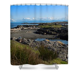 Trial Island And The Strait Of Juan De Fuca II Shower Curtain by Louise Heusinkveld