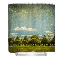 Triangular Trees 003 Shower Curtain