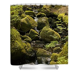 Tributary Shower Curtain