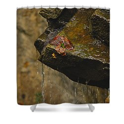 Trickling Water Shower Curtain by Mary Carol Story