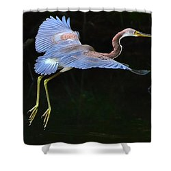 Tricolored Heron Shower Curtain by Charlotte Schafer
