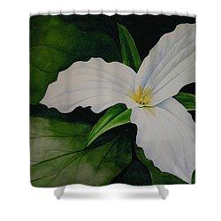 Trillium Shower Curtain