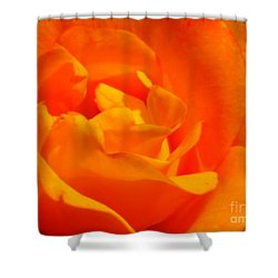 Shower Curtain featuring the photograph Trip Around The Sun by Patti Whitten