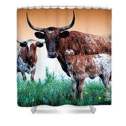 Triple Brandy Wine  Shower Curtain
