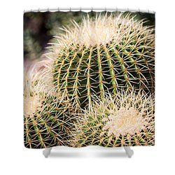 Triple Cactus Shower Curtain