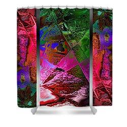Triptych Chic Shower Curtain