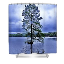 The Healing Tree - Trap Pond State Park Delaware Shower Curtain